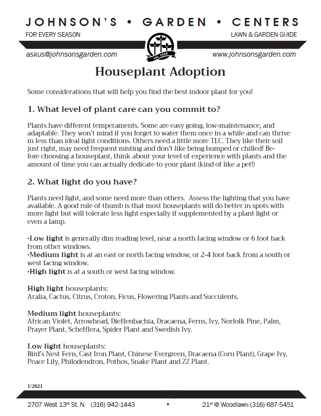 Houseplant adoption